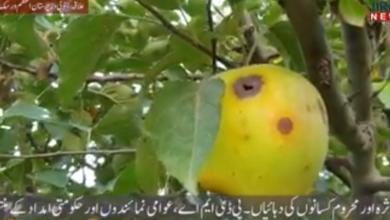 Photo of ضلع جنوبی وزیرستان علاقہ زالئی کے زمیندار زرعی سہولیات سے محروم